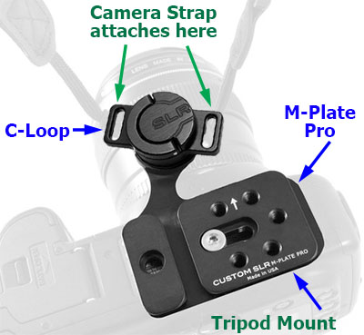 C-Loop and M-Plate Pro