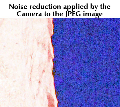 In Camera Noise Reduction